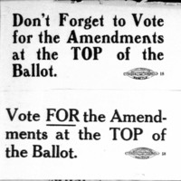 Page 006 : Don't forget to vote for the amendments...